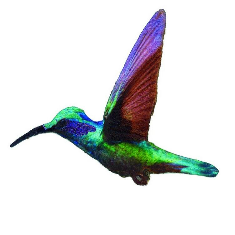 APPLIKATION KOLIBRI - PRISMA