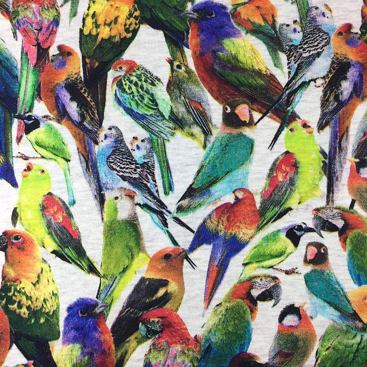 ALPENFLEECE TROPICAL BIRDS